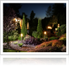 Eco-friendly lights for your San Jose, CA